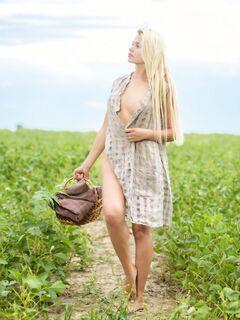 Голая блондинка гуляет в поле - фото